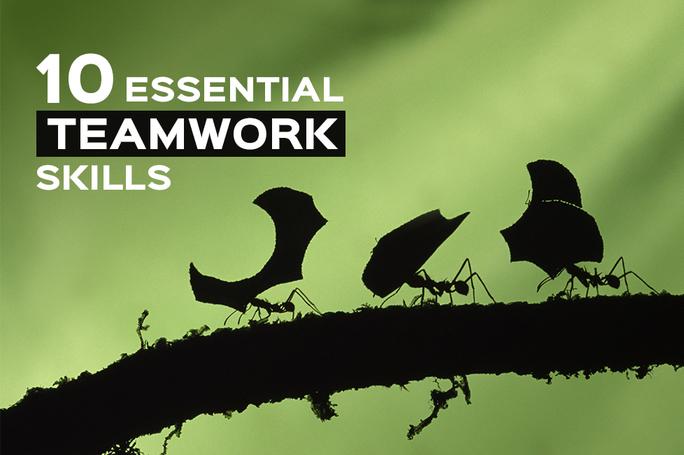 Essential Teamwork Skills